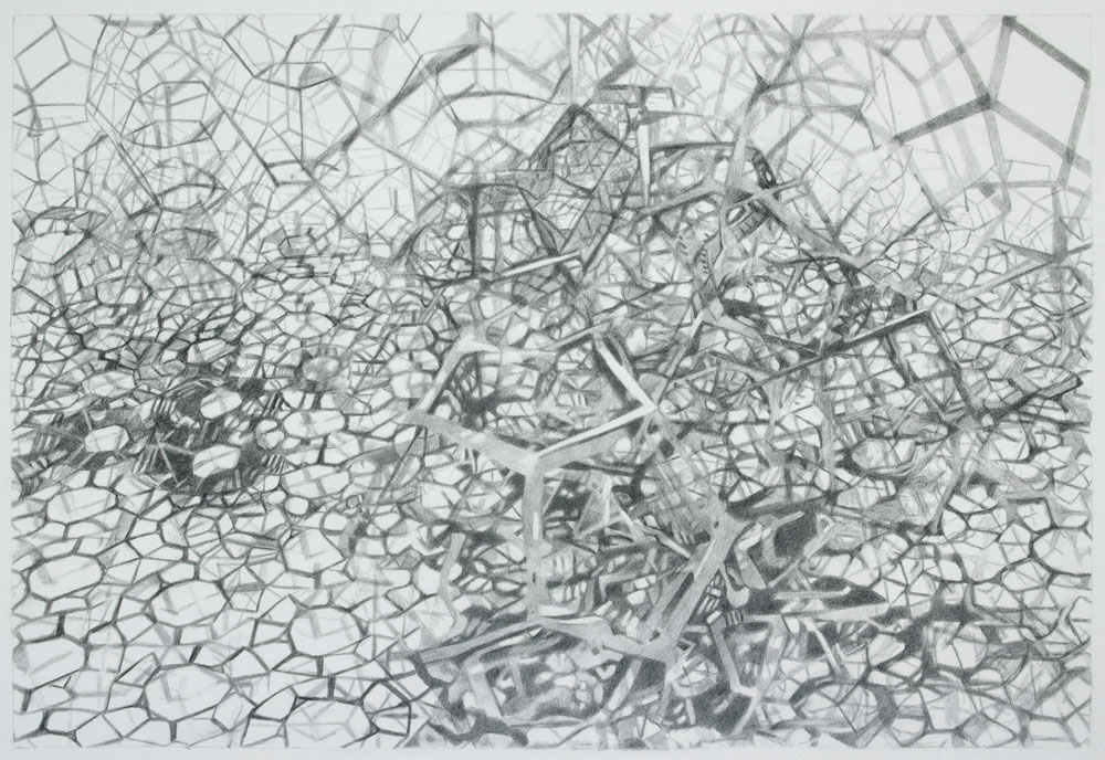 Graphite on paper 17 in x 25 in