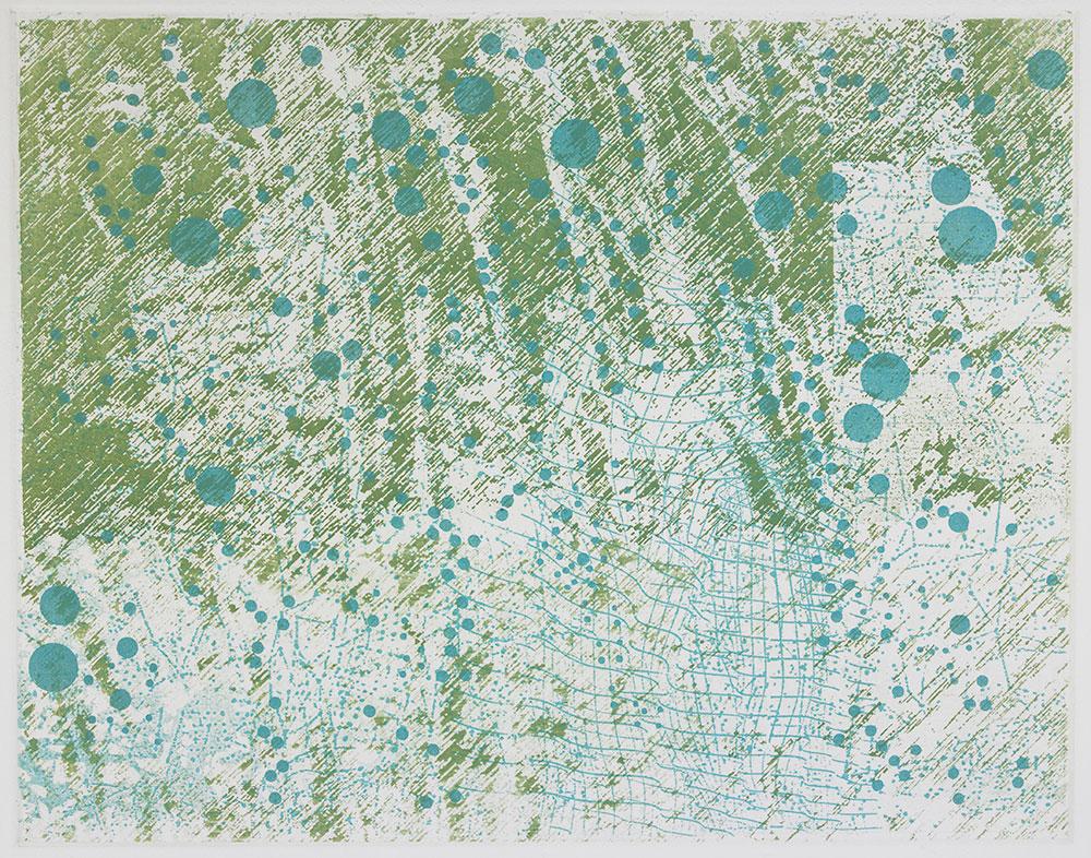 Rain on Ferns, etching, 11 in x 14 in